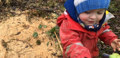 Forest School Jan 30th 2017