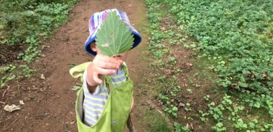 Forest School July 3rd 2017